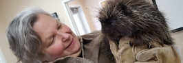 volunteer_porcupine