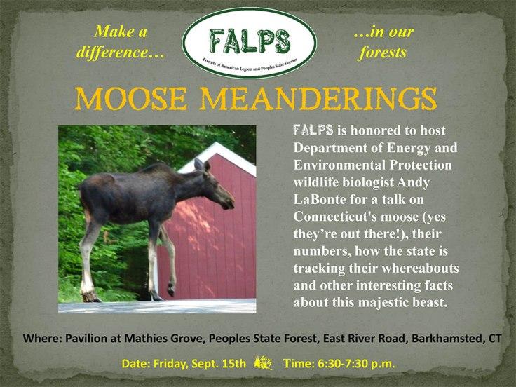 Moose91517